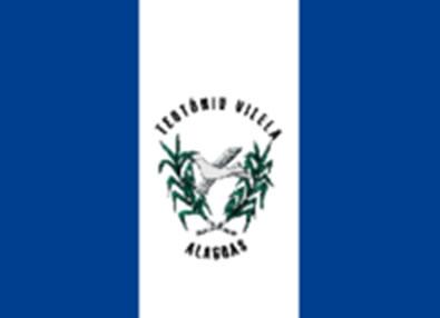 Bandeira Teotônio Vilela